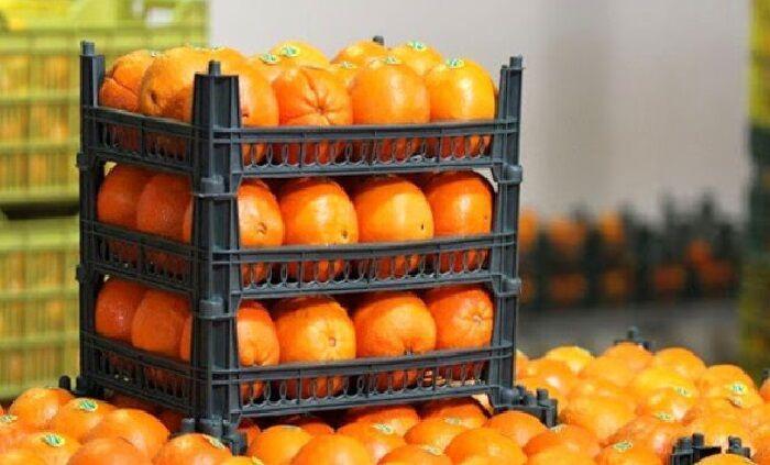خبرنگاران بیش از سه هزار تن میوه نوروز 99 در خوزستان توزیع شد