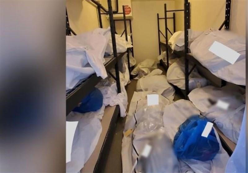 تلفات کرونا در آمریکا به مرز 65000 نفر رسید