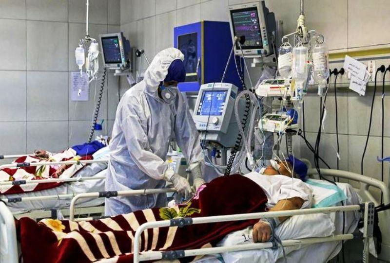 خبرنگاران 38 بیمار کرونایی در قم بستری شدند