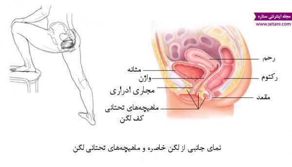 آموزش تمرینات کیگل برای درمان انزال زودرس در مردان