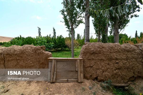 کوچه باغ های روستای خیج و کلاته خیج، تصاویر